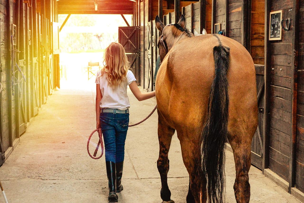 Horse boarding staff