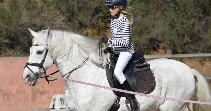 Girl riding a white horse